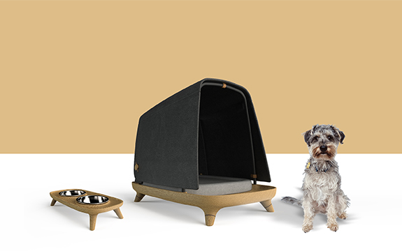 Architecturally designed Timberfly dog bed with corresgonding dog bowl to its left and a small dog to the right