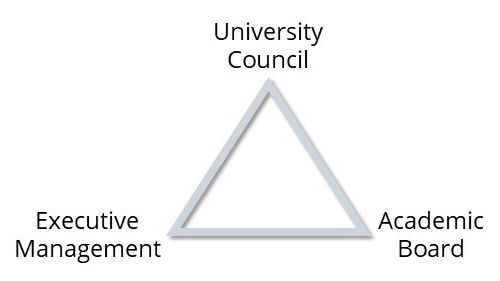 The University Governance Triangle includes the University Council, Academic Board and Executive Management, each at the point of a triangle.