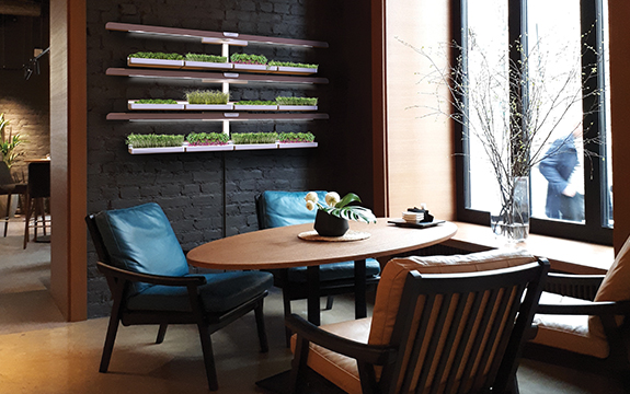 Hydroponic microgreens planter for cafes by industrial design student Andrew Clarke.