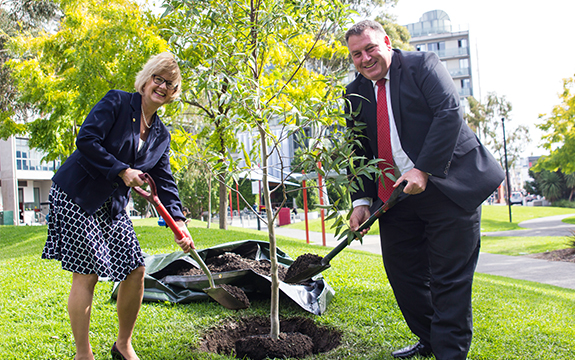 A tree has been planted at Swinburne's Hawthorn campus, symbolising the long standing commitment both parties hope to embrace in years to come.