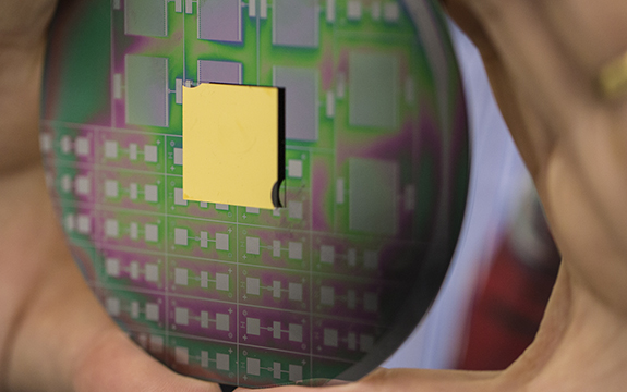 The breakthrough nanophotonic chip can harness the angular momentum of light, paving the way for next generation optical technologies. Image: RMIT University.