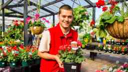 Horticulture and landscape design student holds a plant surrounded by colourful flowers