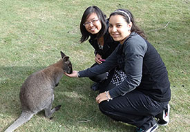 Two Swinburne international students feeding a wallaby on an orientation day trip.