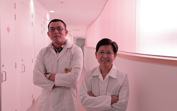 Professor Baohua Jia and Dr Han Lin