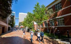 Students walk down John street on a sunny afternoon