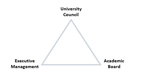 A triangle diagram of university governance with university council at the top and executive management and academic board at the bottom.