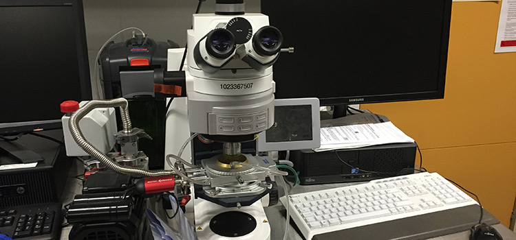 Zeiss microscope with high temperature stage