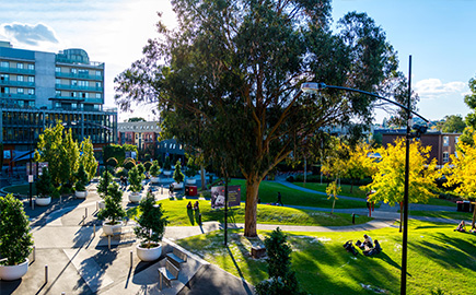Image result for swinburne university úc""